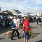 Grandcamp Maisy - Le marché du dimanche en saison